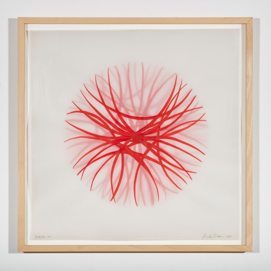 (EN) Birgitta Weimer, Morphogenesis, 2003/2004, ink on various layers of transparent paper, 54 x 54 cm.